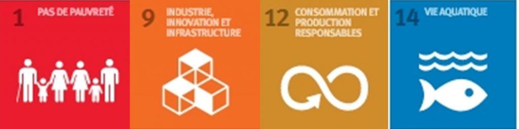 Objectifs de développement durable de la norme ISO 9001:2015